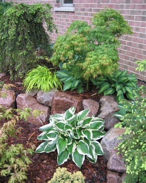 Landscape Ideas Using Hostas Front Yard Landscaping Idea The Two Separate Levels