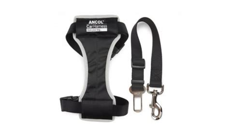 Safety Belt Chelsea ancol safety car harness car harness seat belt