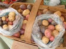 Potato Nzb by Freeport Farmers Market