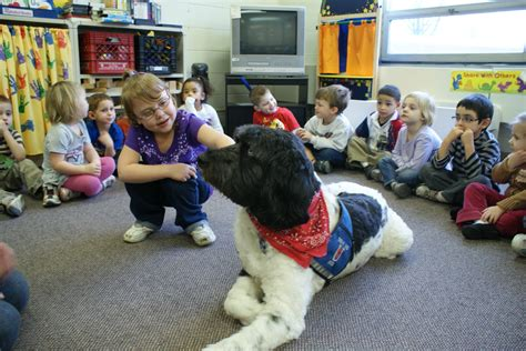 autism therapy dogs therapy on four paws all about autism