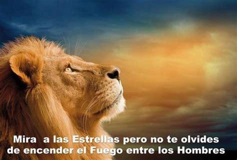 imagenes de leones de zona ganjah historias motivadoras el blog de jairo
