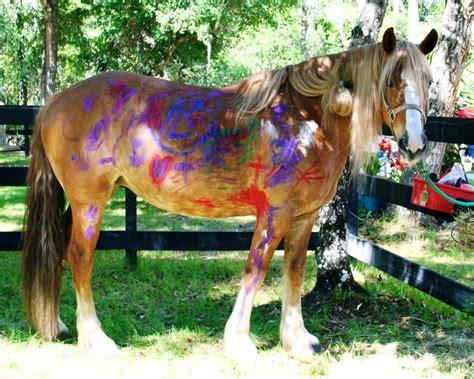 waits bathroom horses gallery whispering meadows ranch