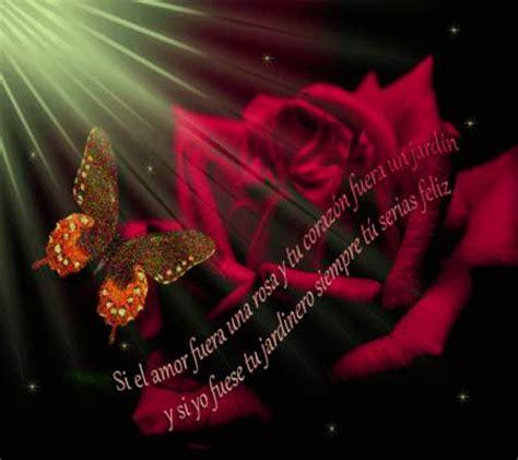 imagenes hermosas de amor sin frases fotos de amor bonitas sin frases fotos de amor