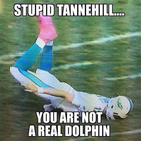 Funny Miami Dolphins Memes - m 225 s de 1000 ideas sobre miami dolphins funny en pinterest
