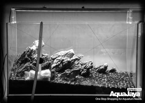 membuat aquascape iwagumi style cara membuat aquascape style iwagumi aquajaya