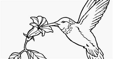 realistic nature coloring pages realistic nature coloring pages for adults realistic