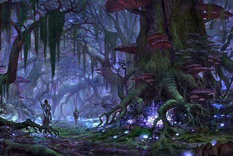 Wall Mural Forest eso concept art elder scrolls online guides