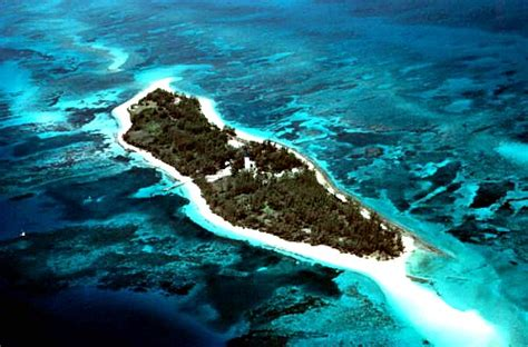 private boat to dry tortugas dry tortugas snorkeling sites to visit on your key west