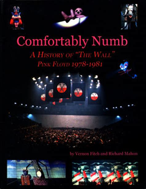 what is pink floyd comfortably numb about pink floyd comfortably numb book catawiki