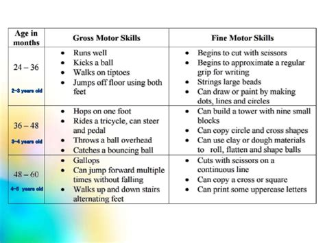 motor skills in motor skills