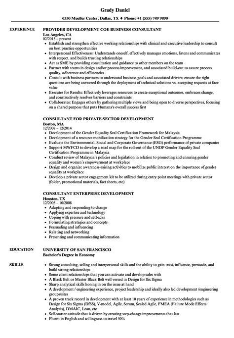 developing a resume exles consultant development resume sles velvet