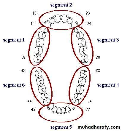 sextant teeth indices of gingivitis docx د خولة muhadharaty