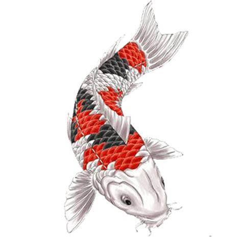 fish tattoo png dragon tattoo transparent png stickpng