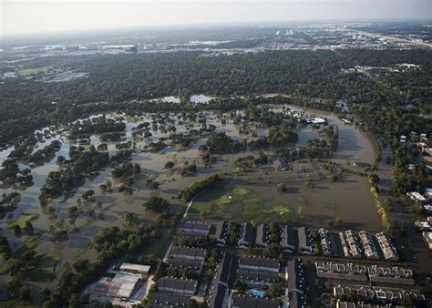 along with the gods houston unsafe e coli levels found in houston floodwaters homes