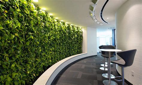 green with envy vertical gardens for st s day