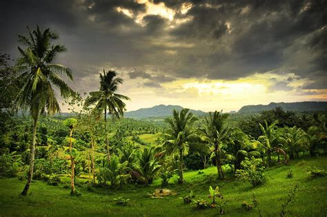 central highlands cebu island philippines photograph by dale e daniel landscape photography