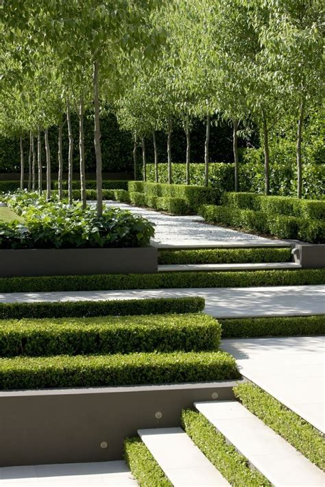 alley garden by fudge landscapes boxwoods