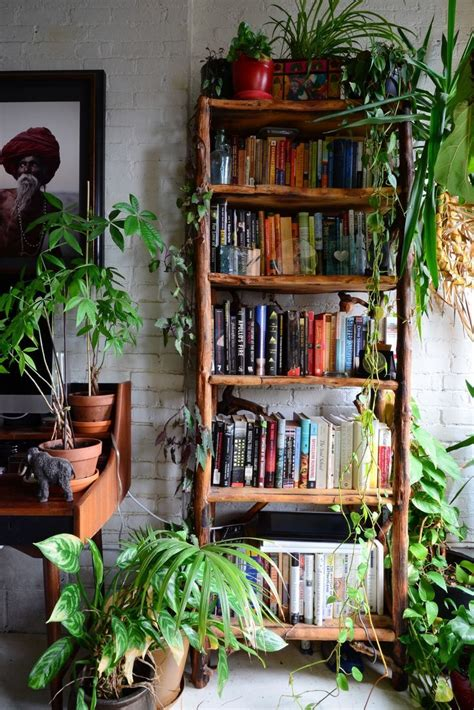 apartment plants ideas this brooklyn apartment has an incredible indoor jungle
