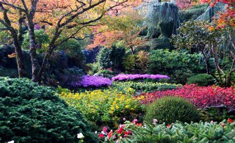 imagenes jardines bonitos pequeños image gallery jardines hermosos del mundo