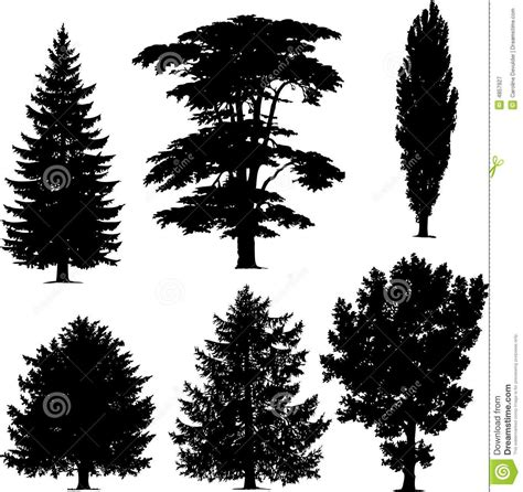 pine tree silhouette tattoo collection pine trees 4857927 jpg 1381 215 1300 cool tats