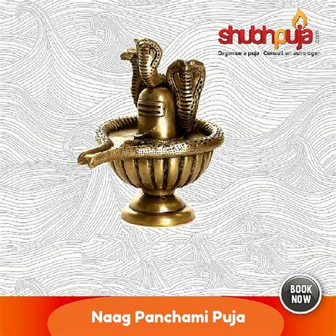 naag panchami puja online naag panchami puja shubhpuja com