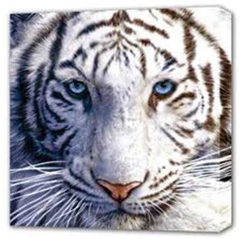 Dompet Wiser padepokanintisemesta pengisian khodam macan putih