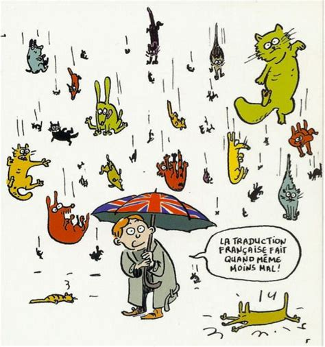 raining cats and dogs meaning 88 best images about raining cats dogs on