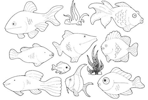 different fish coloring page types of small fish in the ocean coloring pages animal