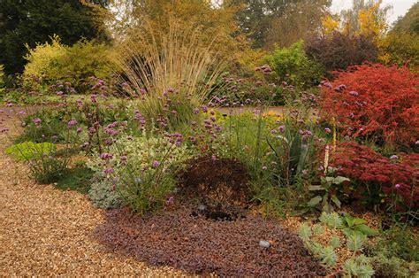 Pflanzen Für Steingärten 1025 by Kiesgarten Gravel Garden