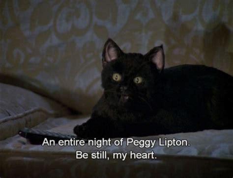 Cat Salem salem the cat quotes quotesgram