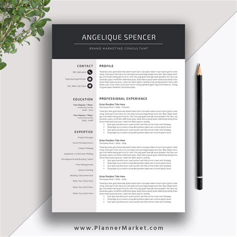 3 Page Resume Template by 1 Page Resume Template Word Sanitizeuv Sle