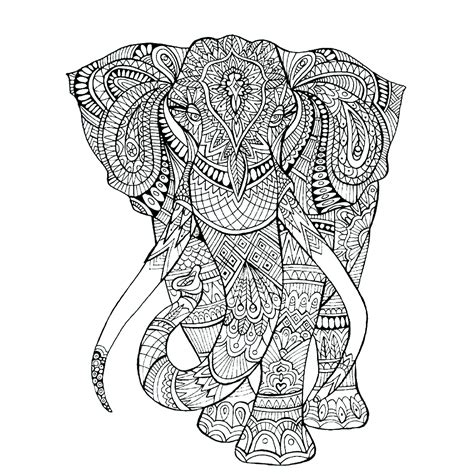 leuk voor kids olifant