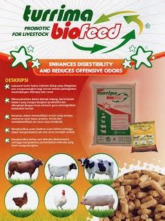 Produksi Ternak Ruminansia teknologi pakan alternatif hewan ternak ruminansia
