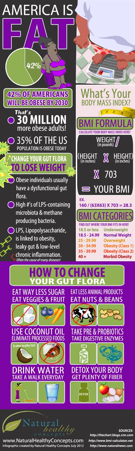 healthy fats infographic change your gut flora to lose weight infographic