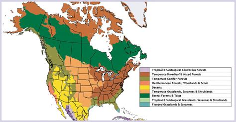 biomes of the united states map usa biome map related keywords usa biome map