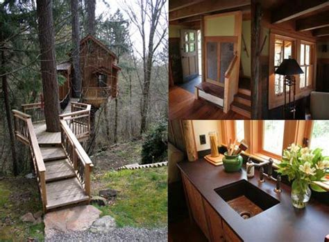 treehouse living treehouse living for adults design of your house its idea for your