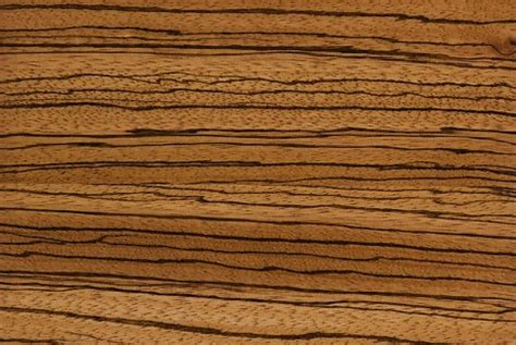 zebra wood cabinets zebrawood cabinets cabinets by graber