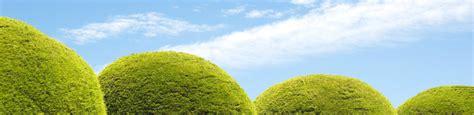 garten und landschaftsbau leverkusen seit 50 jahren garten und landschaftsbau breuer in leverkusen