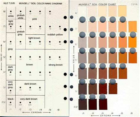 munsell color chart soil colors munsell color chart free munsel color