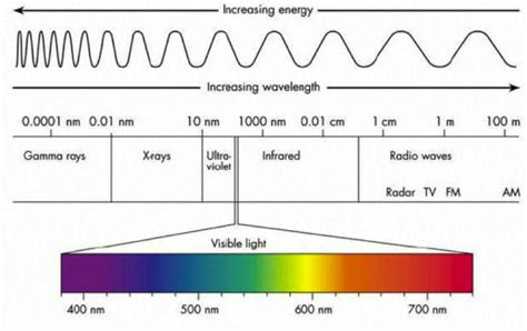 What Color Of Visible Light Has The Wavelength par the light spectrum