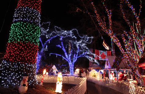 stanley park lights top 12 events in vancouver for families