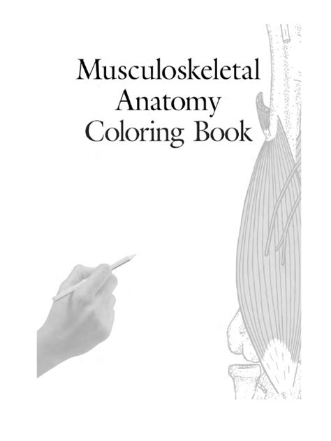 musculoskeletal anatomy coloring book pdf netter anatomy coloring book pdf coloring pages