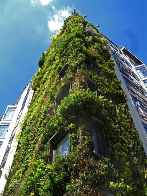 Vertical Gardens Blanc I Need A Guide Vertical Garden By Blanc