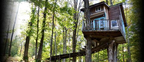 tree house ideas plans tree house design ideas for modern family