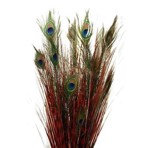 silk peacock home decor 18 real peacock feathers with artificial grass wedding