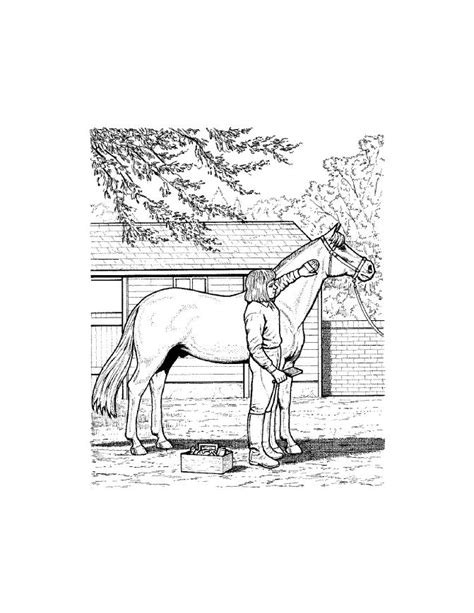 real horse coloring pages coloring home