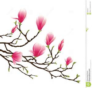 Wall Stickers Flowers fleur de magnolia image stock image 20034721