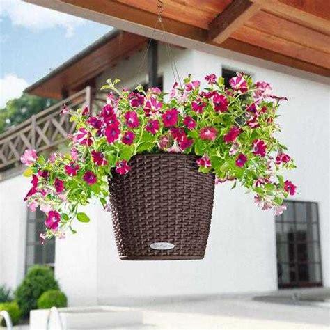 allestimento terrazzi allestimento piante giardini terrazzi napoli monfleur napoli