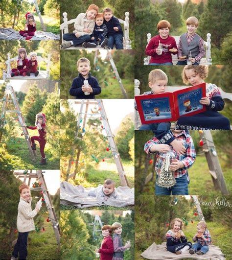 raleigh tree farm tree farm minis family photos tree farm raleigh tree farm