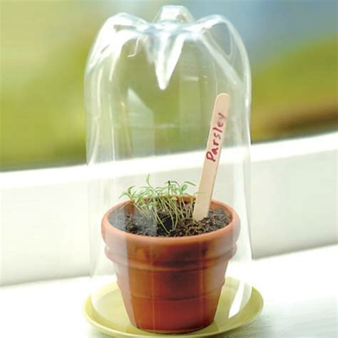 crafting a green world the home for green crafts and mini greenhouse from a plastic bottle